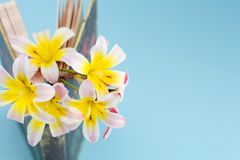 Colorful spring flowers, inbetween pages of standing and slightly opened book/diary. Colorful spring flowers, inbetween pages of standing and slightly opened Stock Image