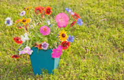 Colorful spring flowers in a square container Stock Images