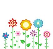 Colorful spring flowers Royalty Free Stock Photo