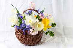 Colorful spring flowers in a wicker basket. Home decoration Royalty Free Stock Image