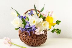 Colorful spring flowers in a wicker basket. Home decoration Stock Photography
