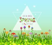 Colorful Spring Graphic Flower Borders.  Royalty Free Stock Photography