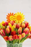 A colorful spring greetings card with tulips for Easter, Mother` Stock Photography