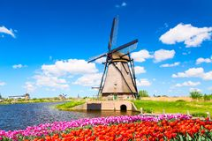 Free Colorful Spring Landscape In Netherlands, Europe. Famous Windmill In Kinderdijk Village With A Tulips Flowers Flowerbed In Holland Royalty Free Stock Photo - 152206635