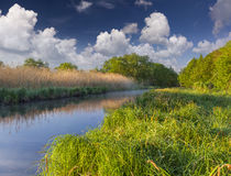 Colorful spring landscape on misty river Stock Images