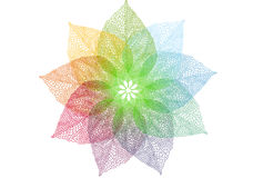 Colorful spring leaves,  Royalty Free Stock Image