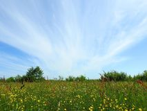 Spring field and beautiful cloudy sky, Lithuania Royalty Free Stock Photography
