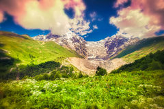 Colorful spring morning in the Caucasus mountain Royalty Free Stock Photography