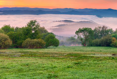Colorful spring morning Royalty Free Stock Image