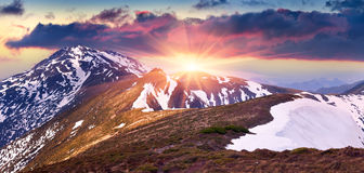 Colorful spring morning in the mountains. Royalty Free Stock Images