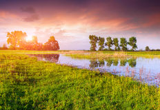 Colorful spring panorama on the sunrise on lake Stock Images