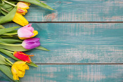 Free Colorful Spring Tulip Flowers On Green Wooden Background As Greeting Card With Free Space Royalty Free Stock Photography - 91334007