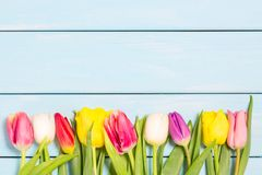Free Colorful Spring Tulip Flowers On Light Blue Wooden Background As Greeting Card With Free Space. Mothersday Or Spring Concept. Stock Photo - 112422370