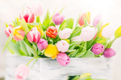 The colorful spring tulips in the box Royalty Free Stock Photography