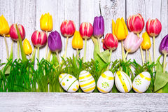 Colorful spring tulips with Easter eggs Stock Image