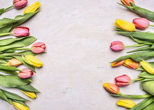 Colorful spring tulips lined frame with space for text wooden rustic background top view Stock Image
