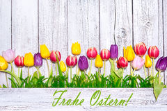 Colorful spring tulips on wooden background Stock Photo