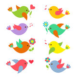 Colorful Springtime birds with flowers Royalty Free Stock Photos