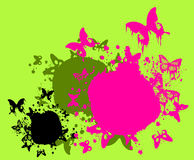 Colorful Stains With Butterflies Royalty Free Stock Images