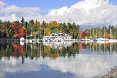 Colorful Stanley Park in the fall royalty free stock photography