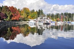 Colorful Stanley Park in the fall Royalty Free Stock Images