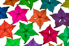 Colorful star fruit on white background. Colorful star fruit is used as the background Royalty Free Stock Image