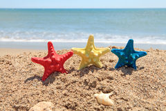 Colorful starfish on the beach Stock Photo