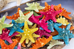 Colorful starfish in a wooden basket Royalty Free Stock Photos