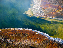 Steaming Pool at Yellowstone Royalty Free Stock Photos