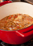 Colorful stew in red cast iron pot. A colorful winter stew cooking on the stove in a red cast iron pot royalty free stock photos