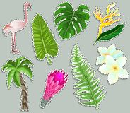 Colorful stickers Tropical plants and flamingo set. Summer holliday and tropical vacation concept. vector illustration