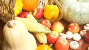 Colorful still-life. Autumn harvest. 4k. moving focus. close-up stock video footage