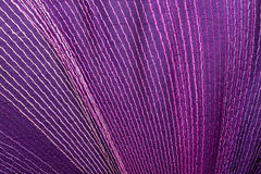 Colorful Stitching Forming Pattern on Mauve Fabric Royalty Free Stock Photography