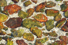 Colorful stone in clear water at seaside. Shown as color, shape and texture, as featured background and detail landscape for designing Royalty Free Stock Photo