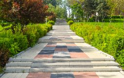 Colorful stone stairs in the city central park in a sunny summer day.  royalty free stock images