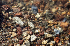 Colorful stones in the creek Stock Photo
