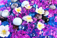 Colorful stones and flowers Royalty Free Stock Photos