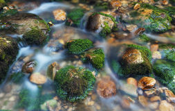 Colorful stones with green moss in mountain river. Blurred water. Nature background. Autumn. Vintage toning. Close-up Royalty Free Stock Photos