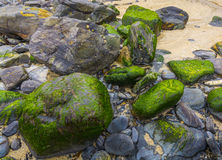 Colorful stones at higer bal cove Royalty Free Stock Image