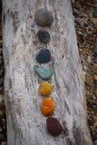 Colorful stones. Rainbow colored stones on driftwood Royalty Free Stock Image