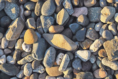 Colorful stones. River Rock in the afternoon sun Stock Photos