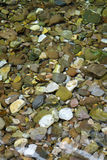 Colorful  stones in the water. Stock Images