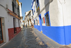 Colorful in a street of Cordoba, Spain Royalty Free Stock Images