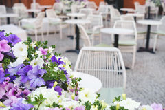 Colorful street flowers in front of outdoor cafe Royalty Free Stock Photo