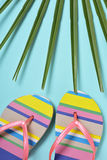 Colorful striped-patterned flip-flops Stock Photography