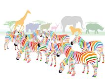 Colorful striped zebra illustration Royalty Free Stock Photos