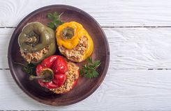 Colorful stuffed peppers. With rice , meat and parsley Royalty Free Stock Images