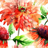 Colorful summer background with flowers Royalty Free Stock Image