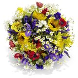 Colorful Summer Bouquet Royalty Free Stock Images