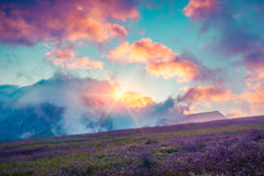 Colorful summer cloudscape in the foggy Val di Fassa valley Stock Image